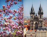 Романтика весенней Праги: Прага - Карловы Вары-820887002