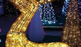 Новый год в Киеве-1689578733