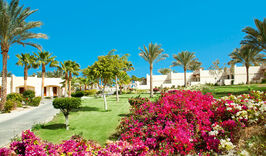 CORAL BEACH RESORT HURGHADA 4* (Хургада)-1225578819