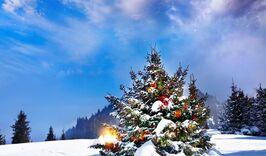 Новый год в Гродно-52819803