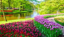Тур Берлин – Амстердам – парк цветов Кекенхоф – Познань-751266496