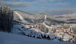Новый год в Карпатах + Львов 5 дней-1126559120