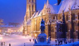 Новый год в Вене-891768830