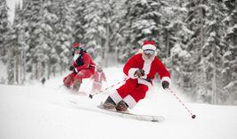 Новый год в Карпатах + Львов-683499724