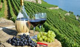 Италия эксклюзив + отдых на Тосканском побережье-882922827