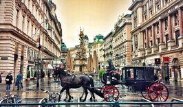 Новый год в Вене-1354689474
