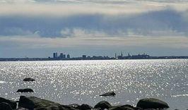 Три столицы Балтики-1561359275