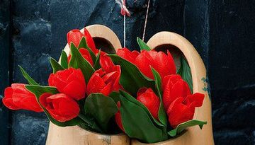 Уикенд в Нидерландах + парад цветов Блюменкорсо-1620017985
