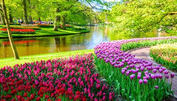 Тур Берлин – Амстердам – парк цветов Кекенхоф – Познань-2029976280