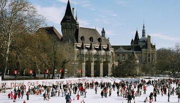 Новый год в Будапеште-239885217