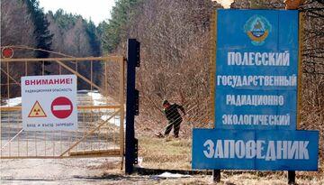 Белорусская зона отчуждения-1377079434