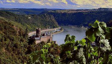 NEW! Долина Рейна 15.10-483850376