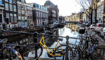 Уикенд в Нидерландах + парад цветов Блюменкорсо-1819888159