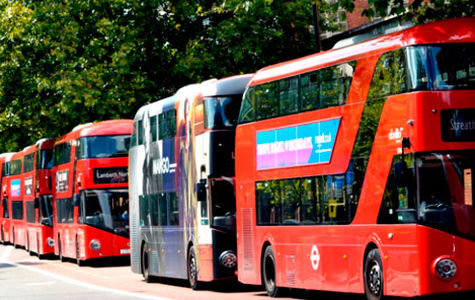 Широкий ассортимент автобусных туров