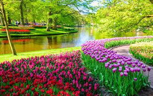 Тур Берлин – Амстердам – парк цветов Кекенхоф – Познань-1828448845