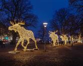 Новый год в Норвегии-1618429922